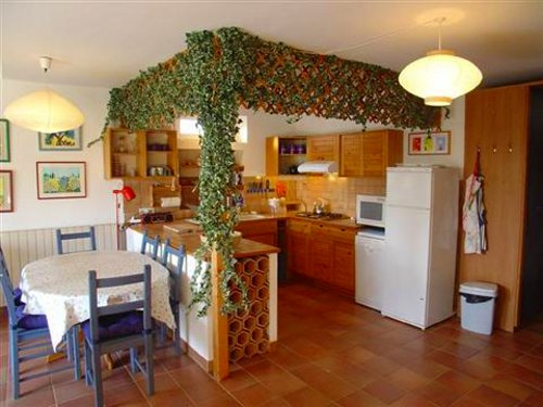 Decora��o da cozinha com flores de trepadeira