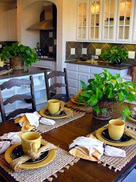 Decoração da cozinha com plantas na mesa e bancada